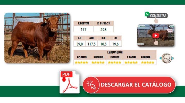 Catálogo Remate 2021 Los Pirulos Limangus Tres Lomas